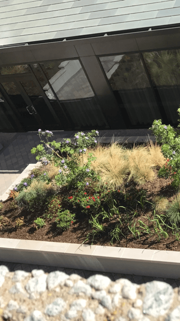 commercial flower beds