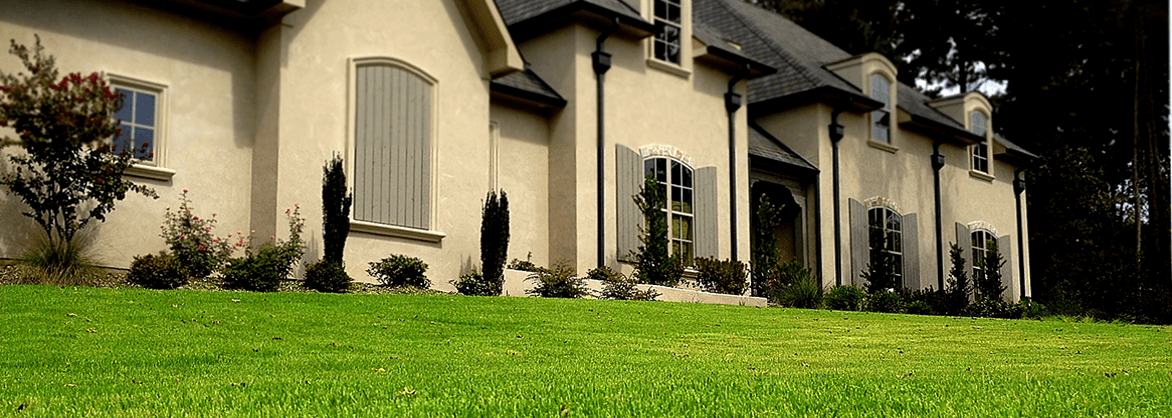 Lawn & Shrub Treatment Service