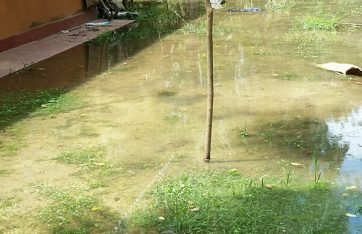 Does Your Home Have Flooding Or Drainage Issues After Heavy Rains?