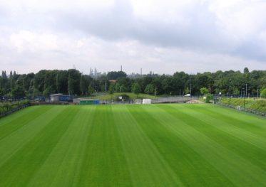 Fotbalovy Travnik Schalke