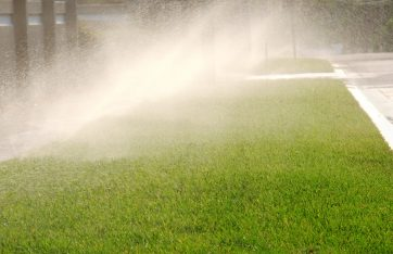 Does my Sprinkler System Need to be Automatic?