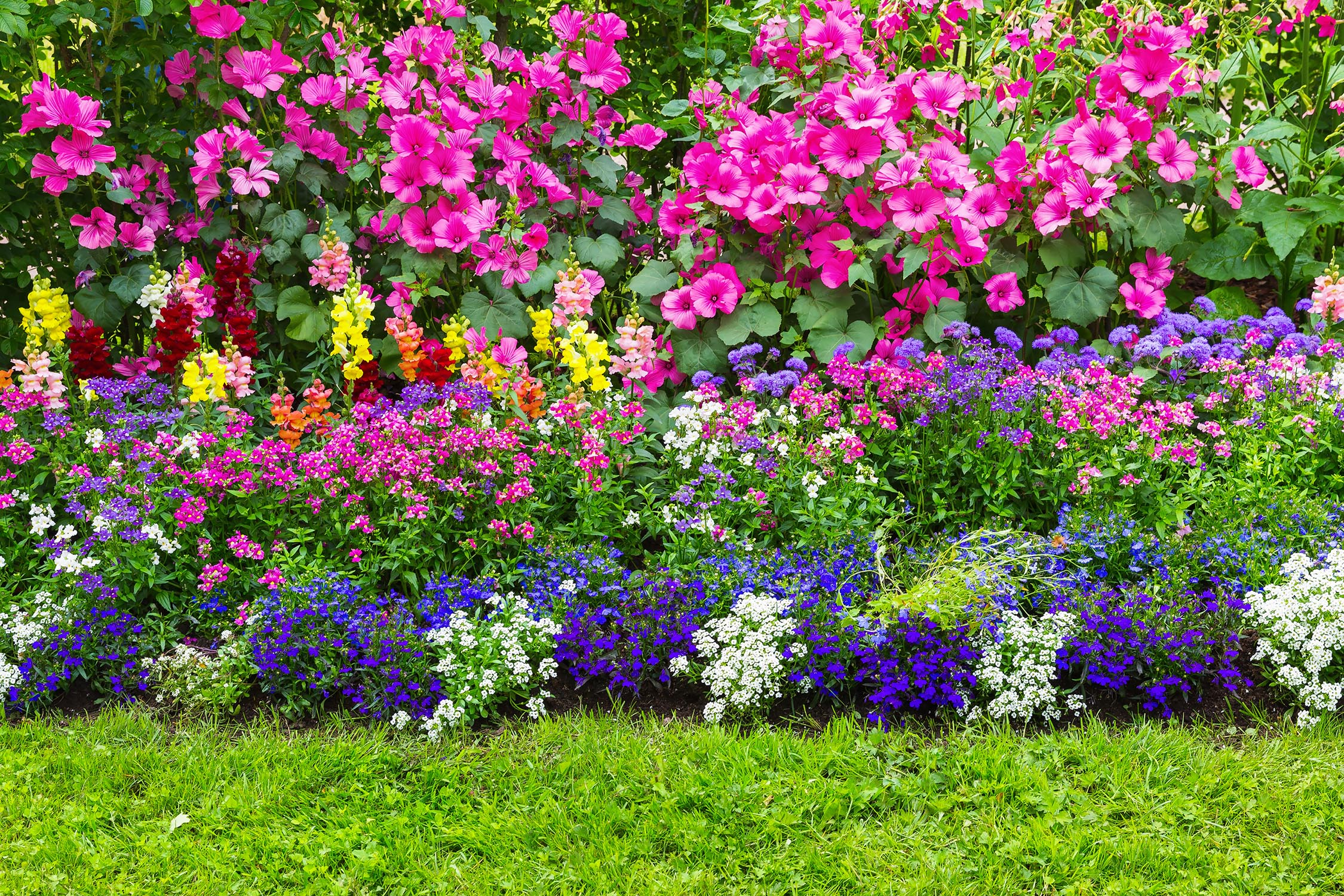 Beautifully landscaped flower beds